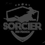 logo_sorcier_pronos